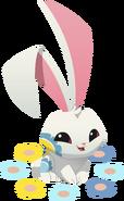 Renovated art spring bunny