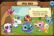 Pets only party pop up