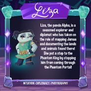 LizaInformation-DailyExplorer