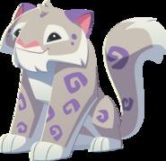 Silver snow leopard