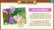 Jamaa-Journal Pet Love Bunnies