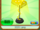 2020 Lamp