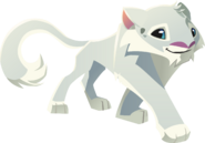 Snow leopard graphic detailed