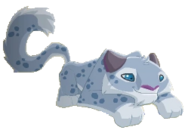Lyingleopard