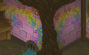 Cosmos-Den Rainbow-Pink