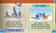 Jamaa-Journal Snow-Leopards-Returning