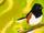 Backyard Birds Collab