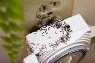 Ants go in plugs
