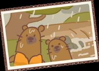 Beaver's Letter 1.png