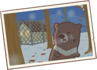 Wounded Bear's Memory 2.png