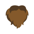Beard3 brown-resources.assets-3412.png