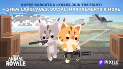 Bobcatt lynx.jpg