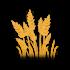 Tallgrass-wheat.png