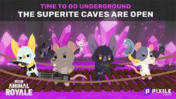 Bats rats and more.jpg