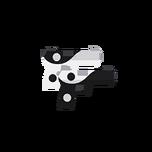 Yin and Yang Dual Pistols.png