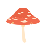 Umbrella mushroom-resources.assets-1902.png