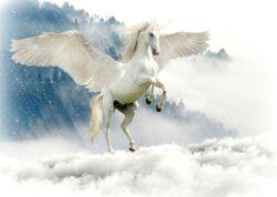 Unicorn-2875349 1920.jpg