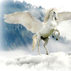 Unicorns, Pegasus's and Pegacorns