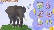 WoZ African Elephant