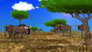ATF Wildebeests