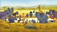 Elephants Zebras Rhinos Hippos Giraffes Okapis Lions Camels Leopards