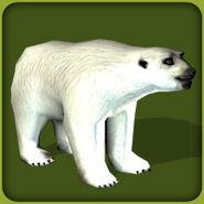 Polar-bear-zoo-tycoon