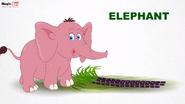 MagicBox Elephant