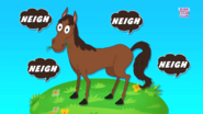 The Horse Goes Neigh