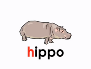 LSS Hippo