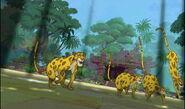 Indian-leopard-the-jungle-book-2