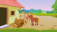 Appu Horse