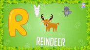 Baby Time Reindeer