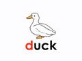 LSS Duck