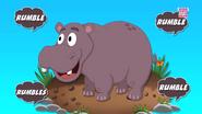 The Hippopotamus Goes Rumble