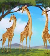 Giraffe-the-lion-guard