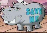 Hippopotamus-the-grim-adventures-of-billy-and-mandy