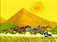 Camp Lazlo Horses