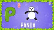 Baby Time Panda