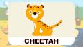BluePhant Cheetah