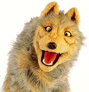 Johnny-the-wolf