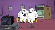 MAD Polar Bears