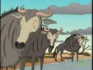 Blue-wildebeest-the-wild-thornberrys