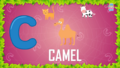 Baby Time Camel