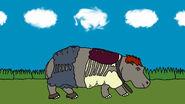 Colin Hippo