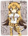 Cheetah-kemono-friends