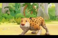 Leopard-unknown-source