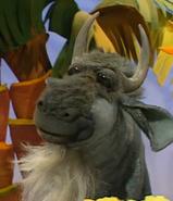 Frankie-the-wildebeest