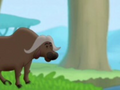 African-buffalo-curious-george-3