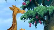 Giraffe-tarzan-2