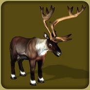 Reindeer-zoo-tycoon